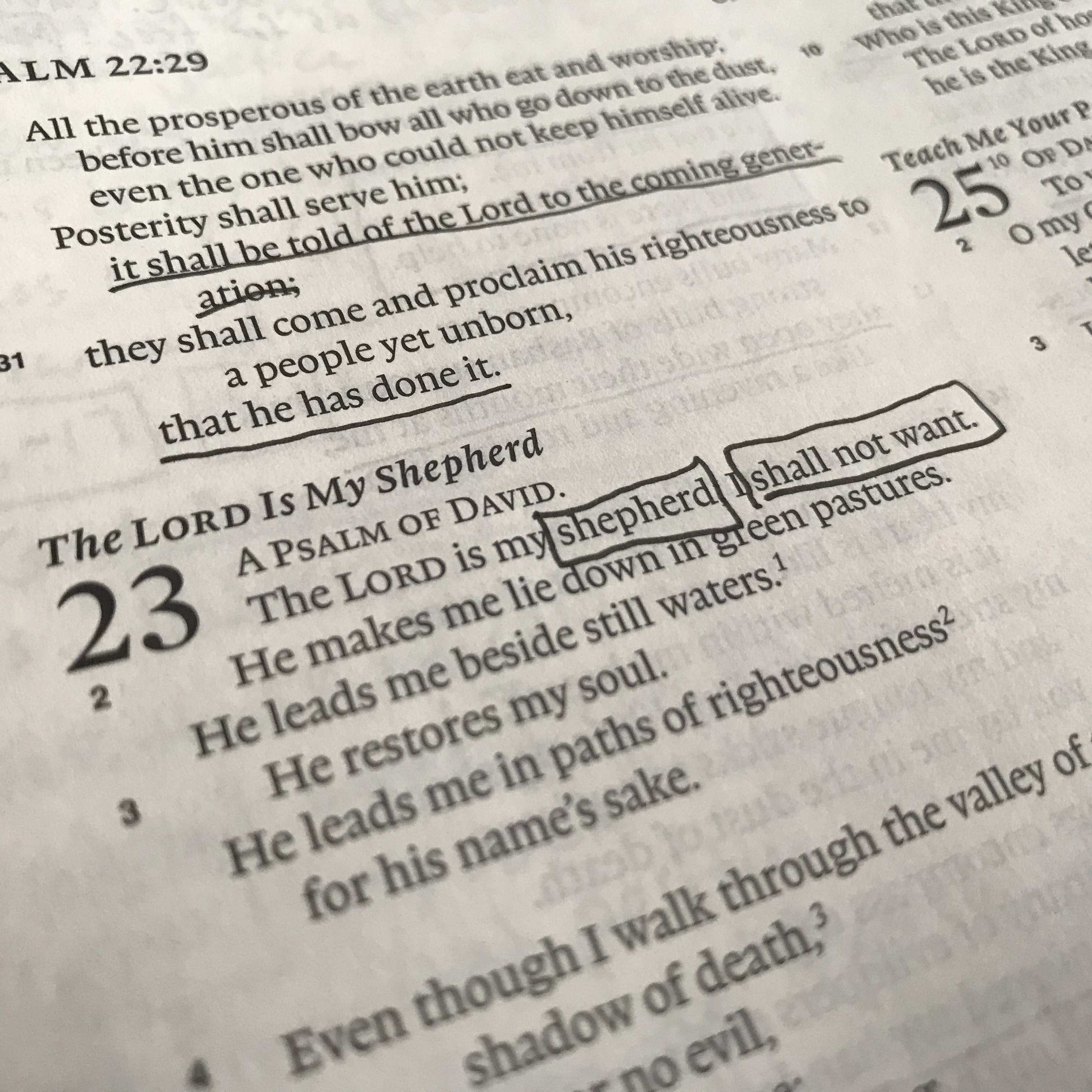 """My prayer for the promise of Psalm 23:1: """"The Lord is my"""